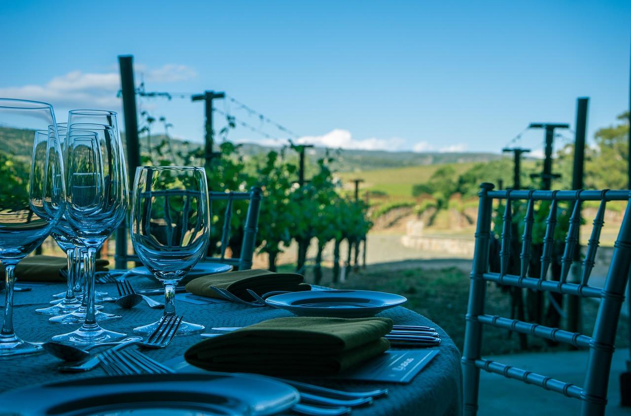 wine, napa valley, vineyard