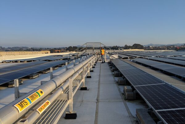Whole Foods Market Distribution Center Improvements | Featured Work | Treat Structural Engineering