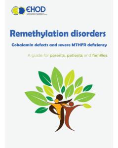remethylation_EN_final-EHOD-COVER
