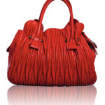 DIVA LUXURY RED LEATHER BAG