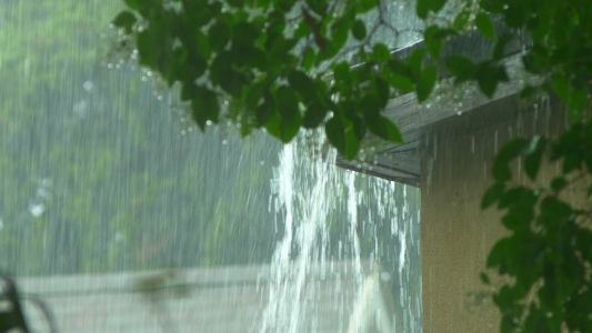 Why Your Home Needs Gutters