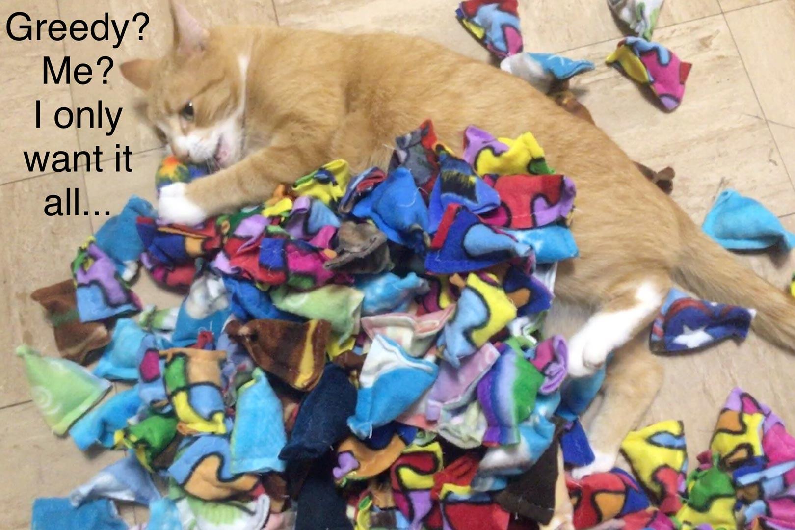 Cat Nip Bags