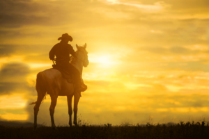 is solar worth it in Texas