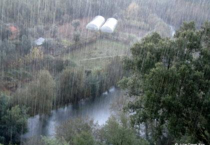 Rain in Portugal
