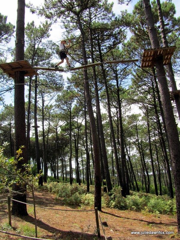 Treetop adventures in Serra da Boa Viagem, Figueira da Foz