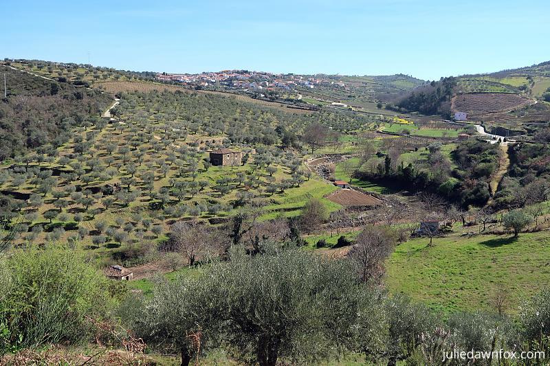 Countryside around Trevões, Douro wine village
