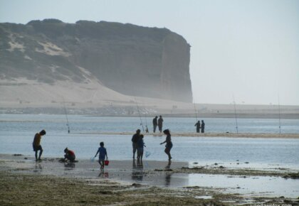 Fishing and foraging at Foz do Arelho lagoon
