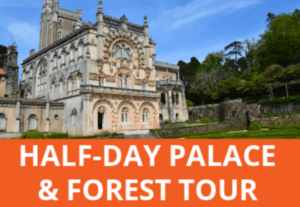 Discover a fairytale palace, Carmelite convent and enchanting forest on this 1/2 day tour from Coimbra Portugal