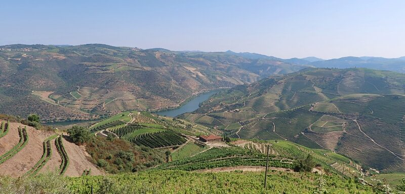 View of the Douro Valley on a hike from Ervedosa do Douro