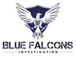 Blue Falcons Investigation