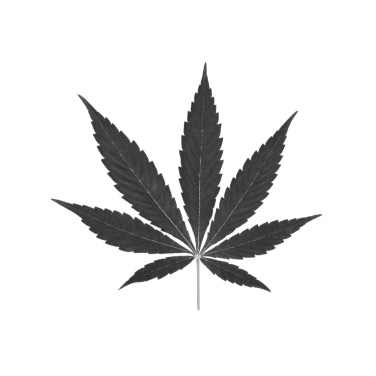 hybrid-leaf