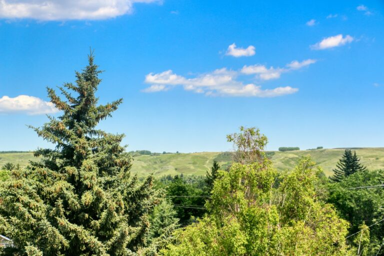 206, 20 Brentwood Common - Nose Hill 2