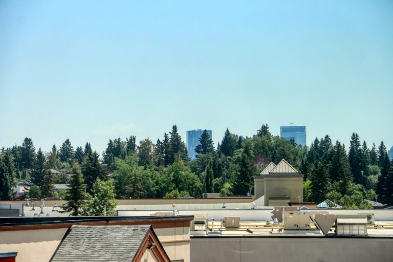 206, 20 Brentwood Common - downtown view
