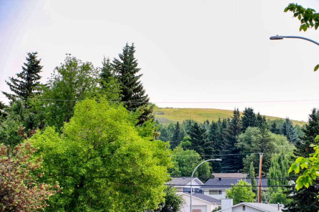 3231 52 Avenue NW - Nose Hill 2