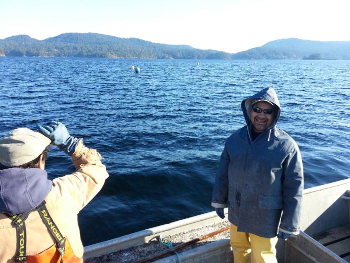 Oyster harvest returns to T'Sou-ke