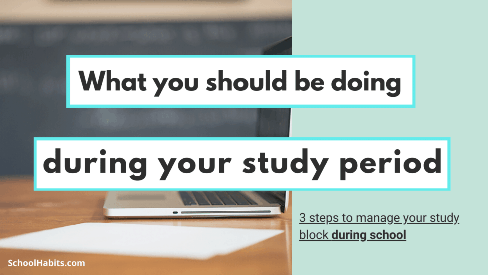 what you should be doing during your study period