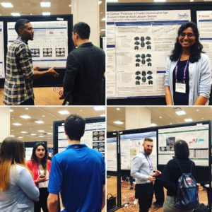 CAN 2019 Poster Presentations