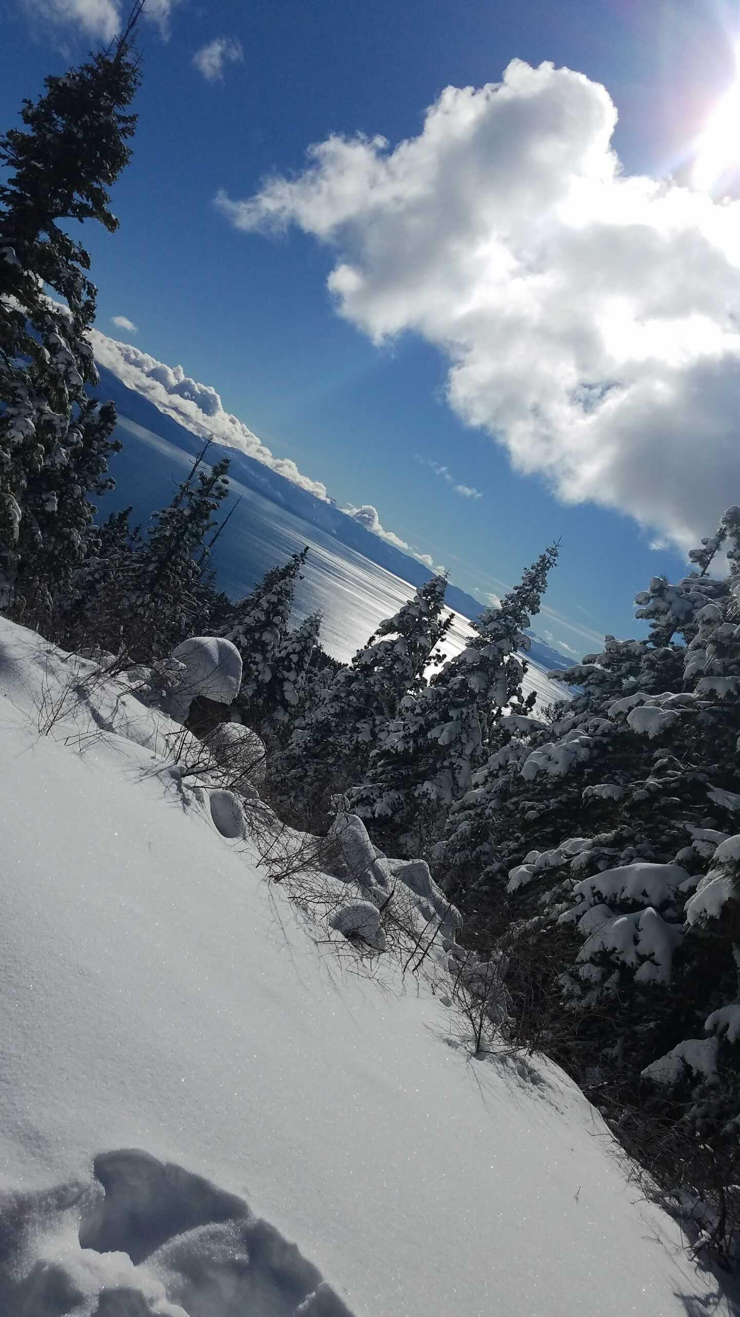 tahoe views