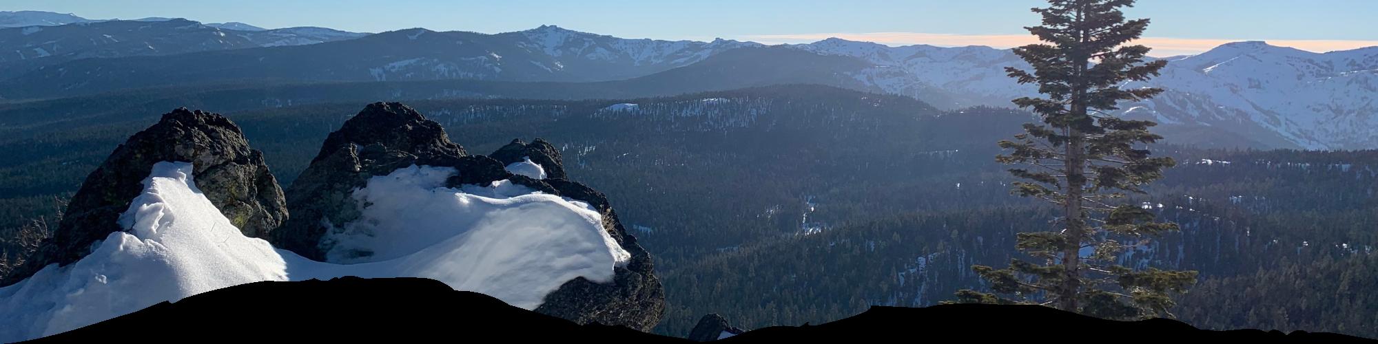 tahoe views banner