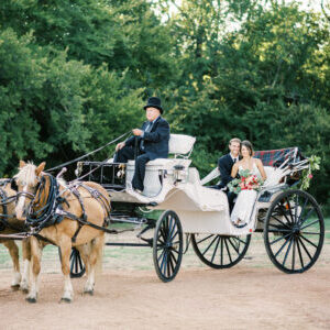 Wedding Portrait in Carriage at Thistle HIll Estate
