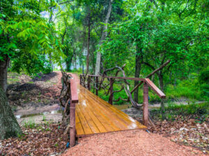 Wooded Area and Bridge at Thistle Hill Estate