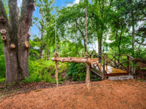 Wooded Area - Garden Swing - Bridge