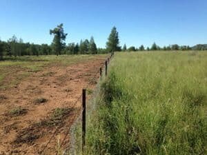 Two fields separated by a fence: one a barren brown dustbowl; the other green and fertile thanks, to regenerative agriculture (photo courtesy of the Savory Institute).