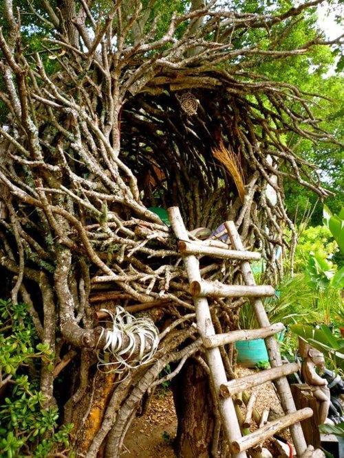 Birds Nest Tree House