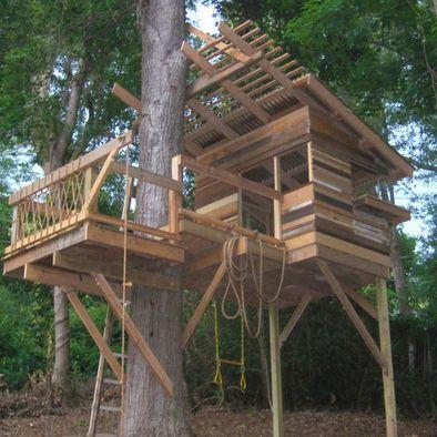 Reclaimed Tree House