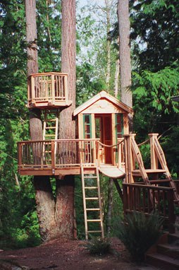 A Tree House for the Altered Ebenezer Scrooge