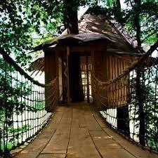 Tiki Tree House