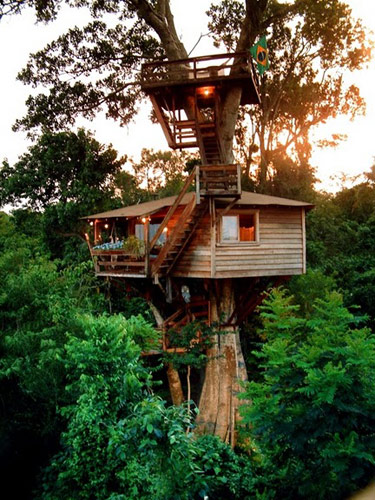 Every treehouse is unique!