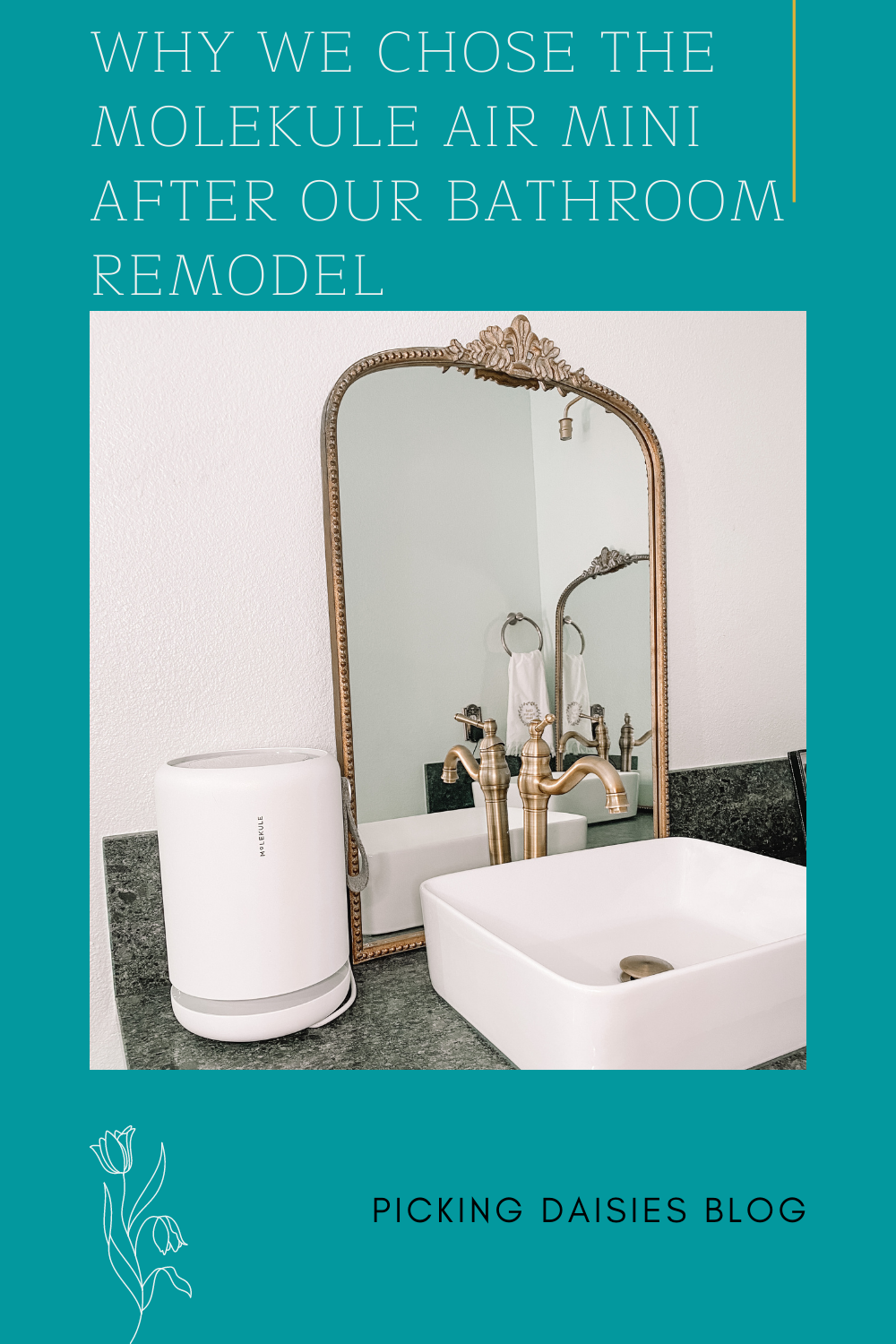 Why We Chose The Molekule Air Mini After Our Bathroom Remodel