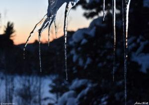 icicles winter dawn cabin