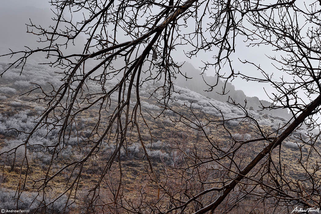 north table mountain in fog and frost seen from below golden colorado