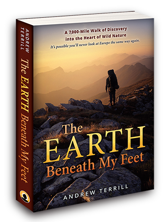 The Earth Beneath My Feet 3D book 450