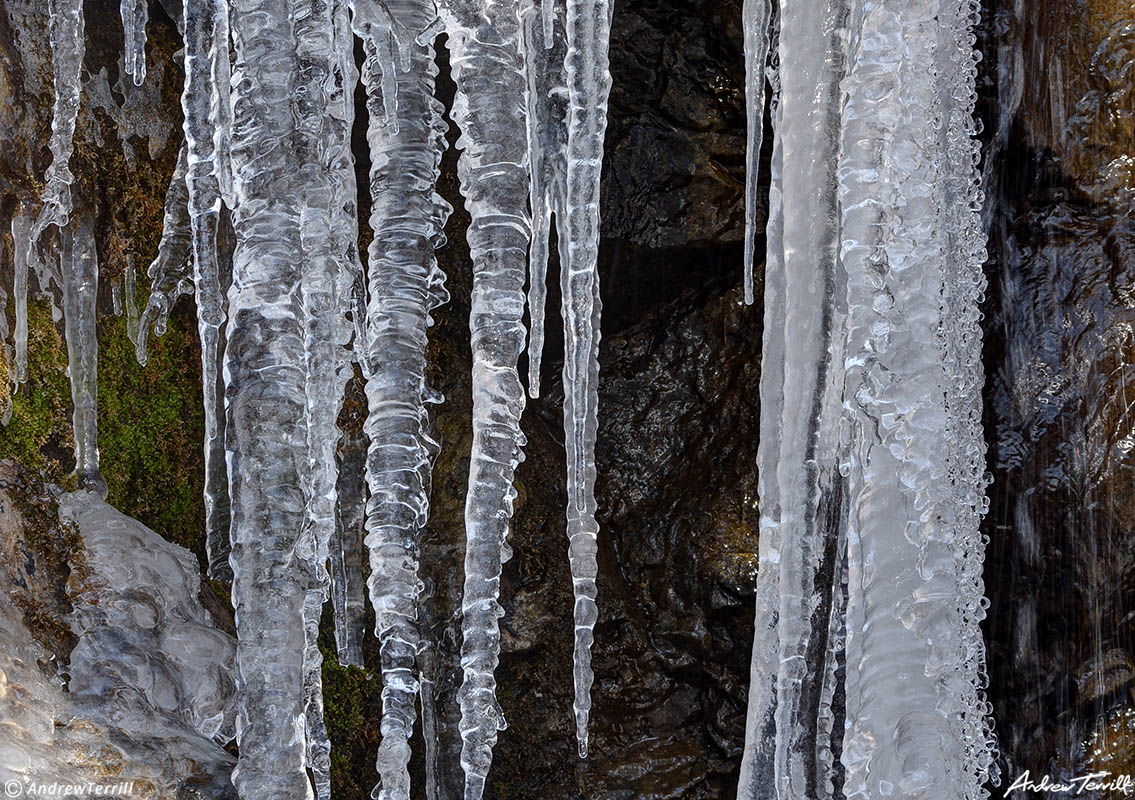 icicles moss rock and water near waterfall with ice