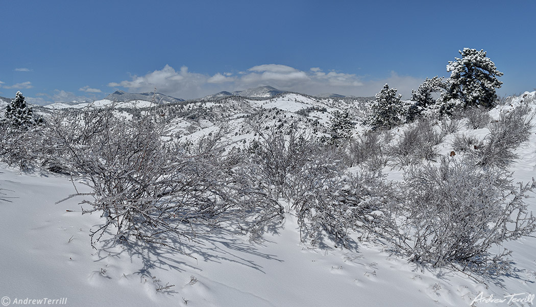 winter snow on mount galbraith open space near golden jefferson county colorado