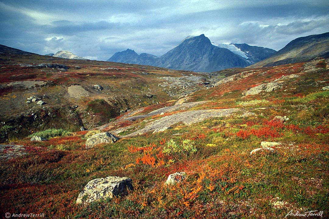 norway arctic mountains in autumn tundra gold