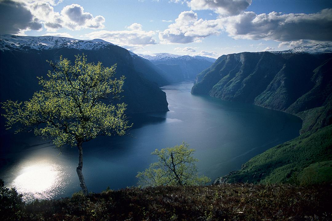 aurlandsfjorden in norway may 1998