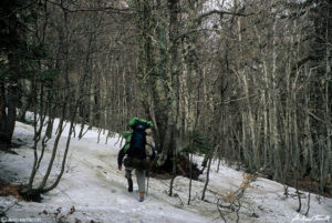 andrew terrill hiker in snow in beech wood on May 3 1997 in the Aspromonte calabria italy