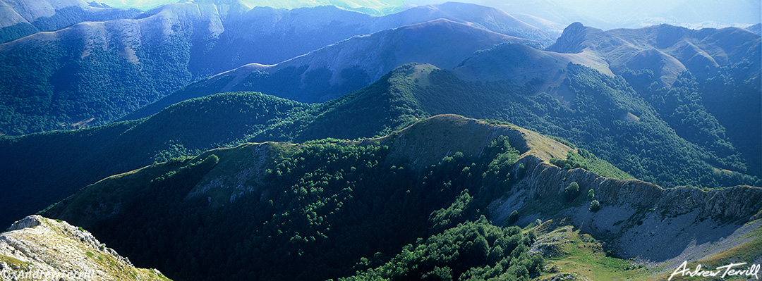 ridges and forests in the abruzzo national park apennines italy july 1997