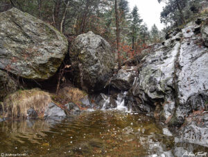 small waterfall and creek in rocky valley with forest in the colorado wilderness
