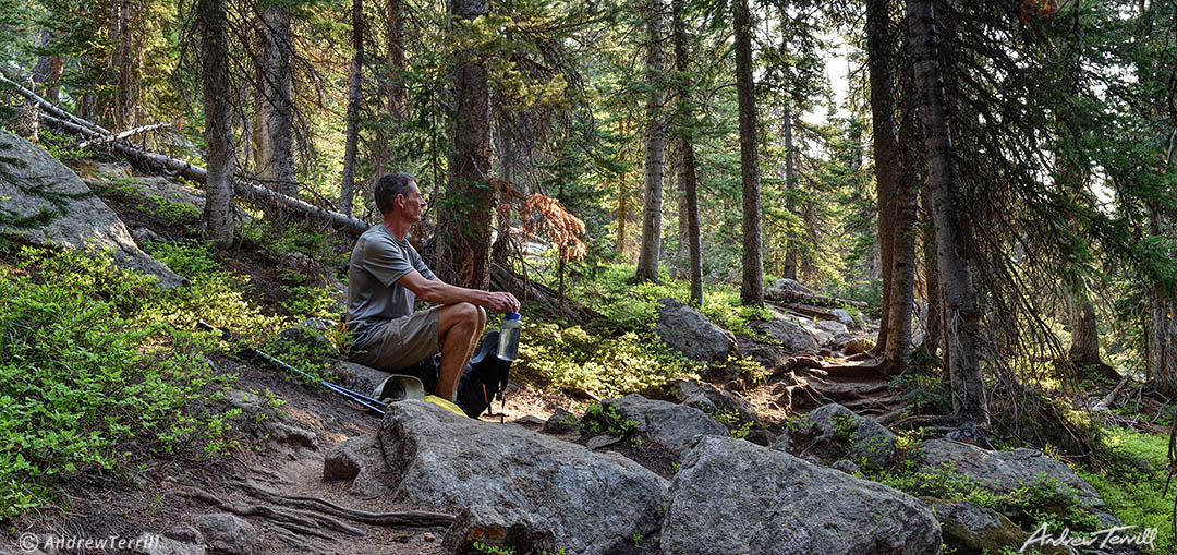 andrew terrill in forest june 2021