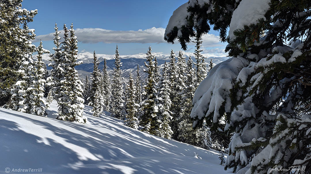 winter forest and mountains in colorado in deep snow front range