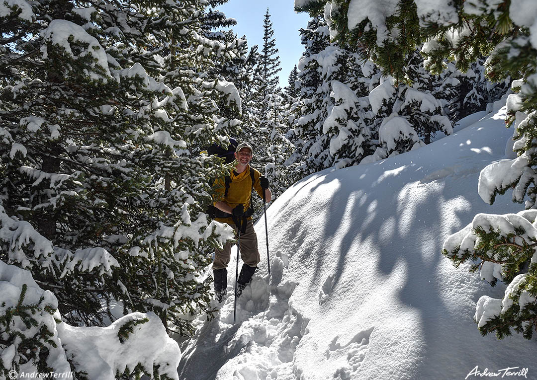 andrew terrill hiker in forest in snow colorado