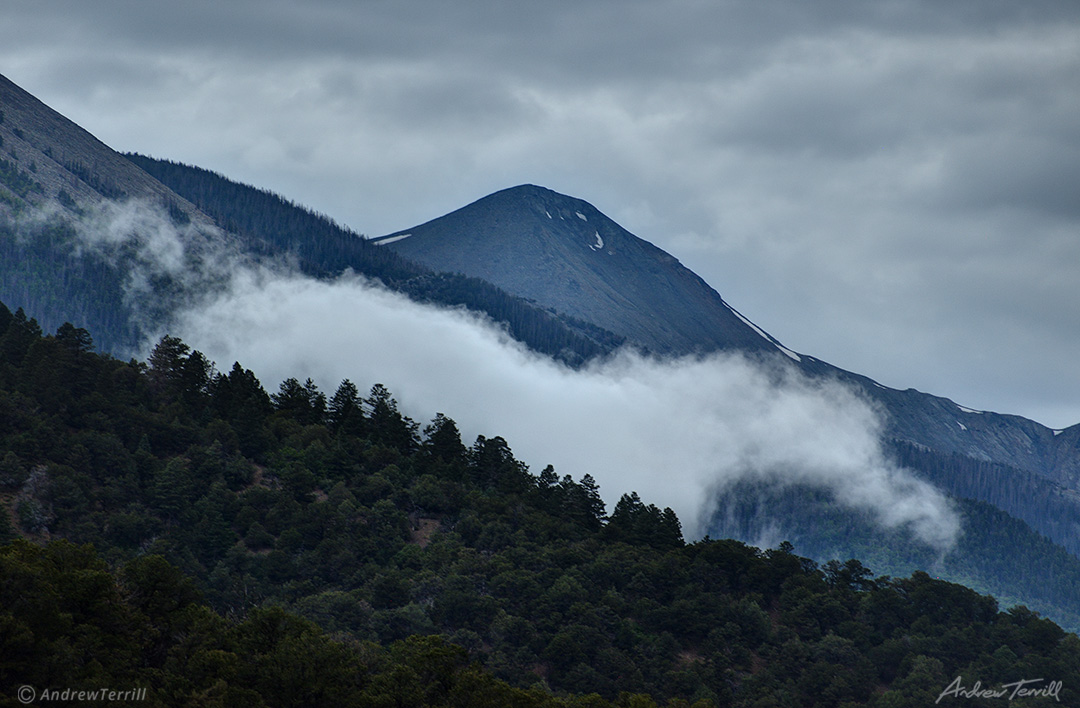 cloud horse in forest colorado
