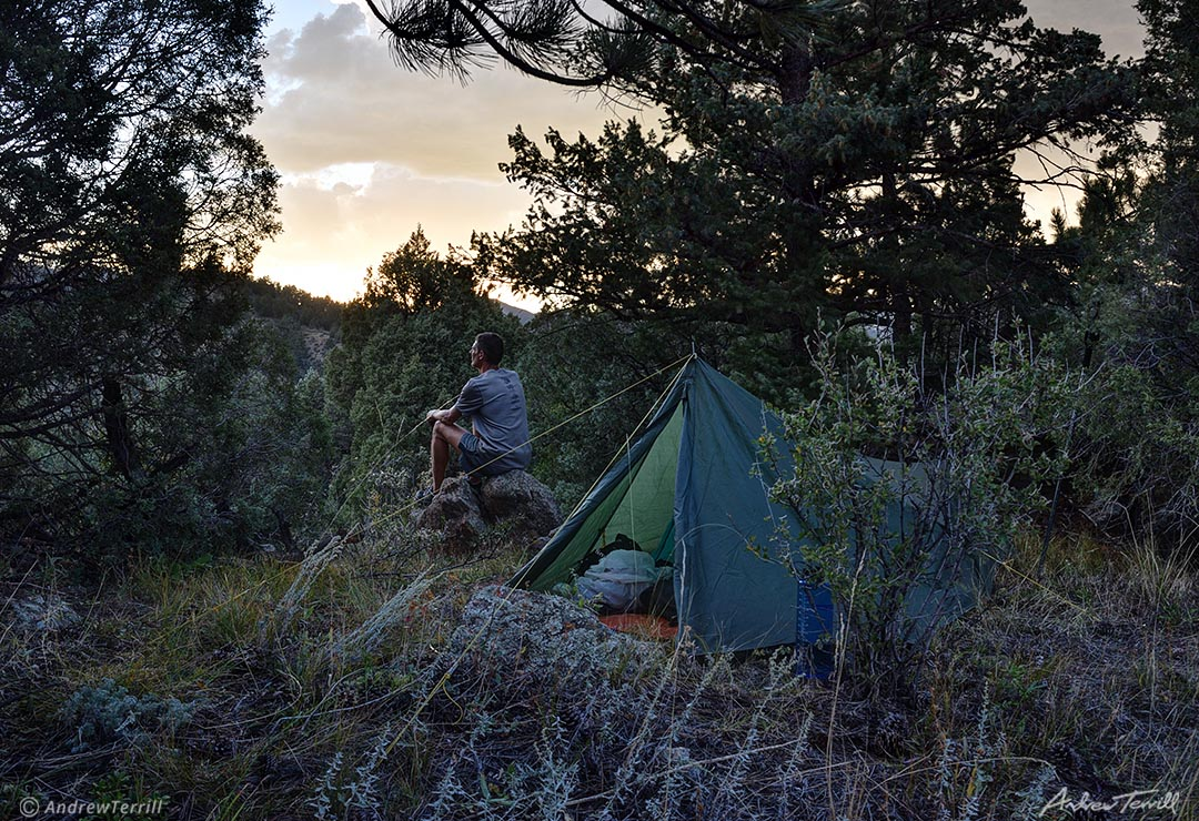 camp and tent on forest at sunset colorado