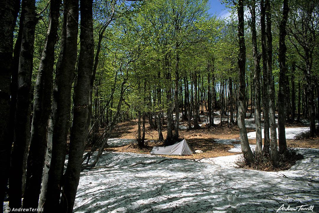 wilderness camp in la sila mountains calabria
