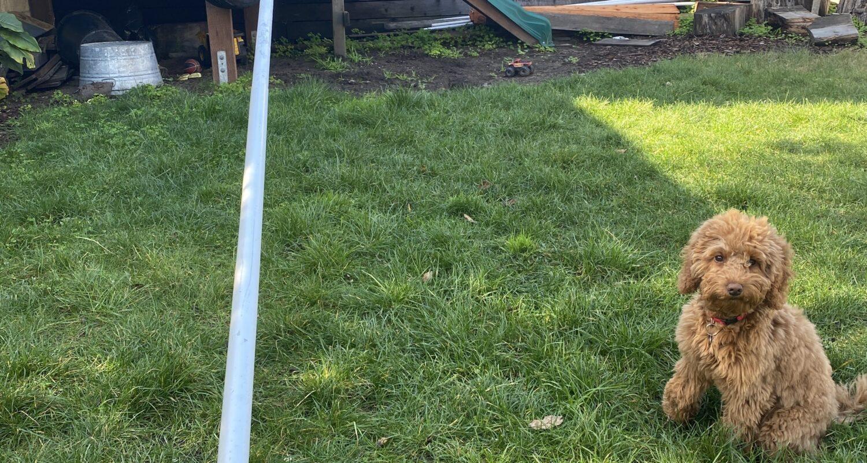Forespar Whisker Pole